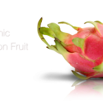 Organic Dragon Fruit Formulation